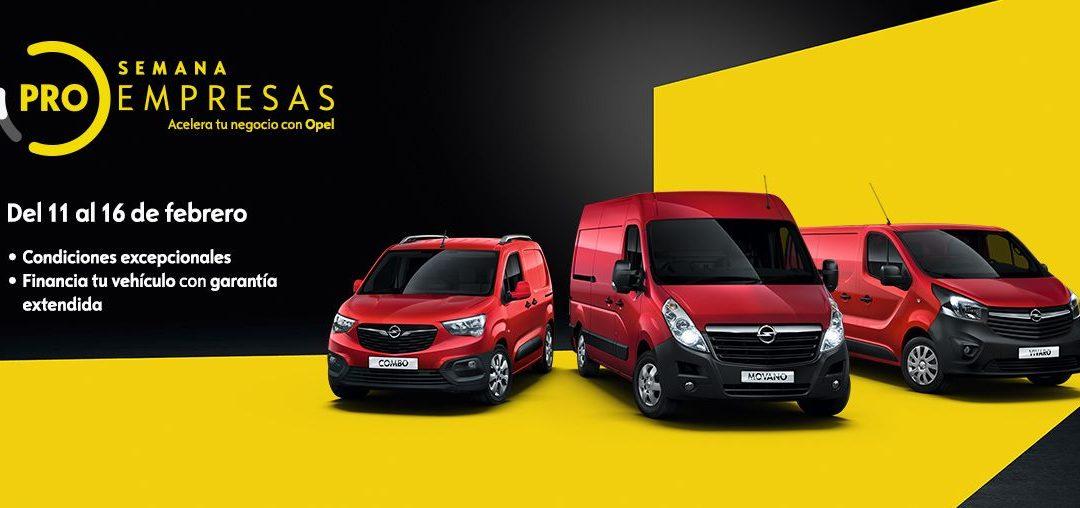 """Los «Días Profesionales"""": promoción de vehículos entre profesionales autónomos y empresas."""