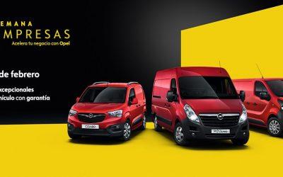 """Los """"Días Profesionales"""": promoción de vehículos entre profesionales autónomos y empresas."""